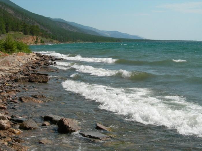 Петиция Change.org: Не дайте Байкалу превратиться в самое большое болото мира