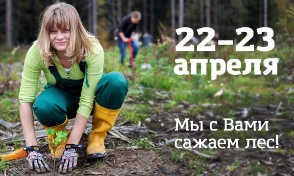 Greenpeace приглашает сажать лес 22 и 23 апреля 2017