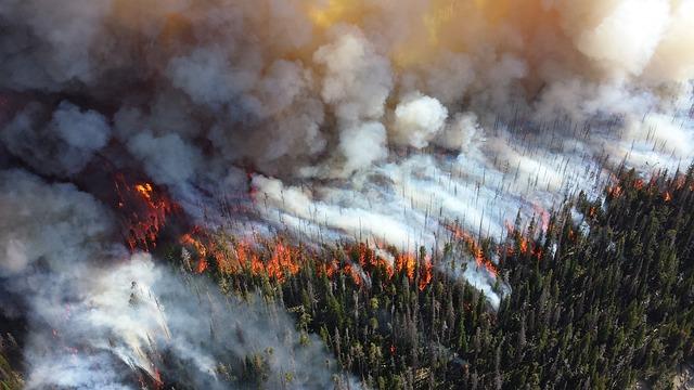 Пожары в Сибири и на Дальнем Востоке