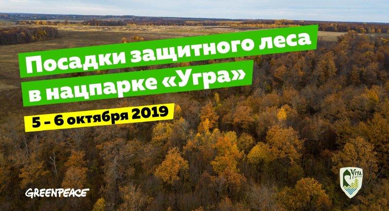 Greenpeace приглашает сажать лес в Калужской области 5-6 октября 2019 г.